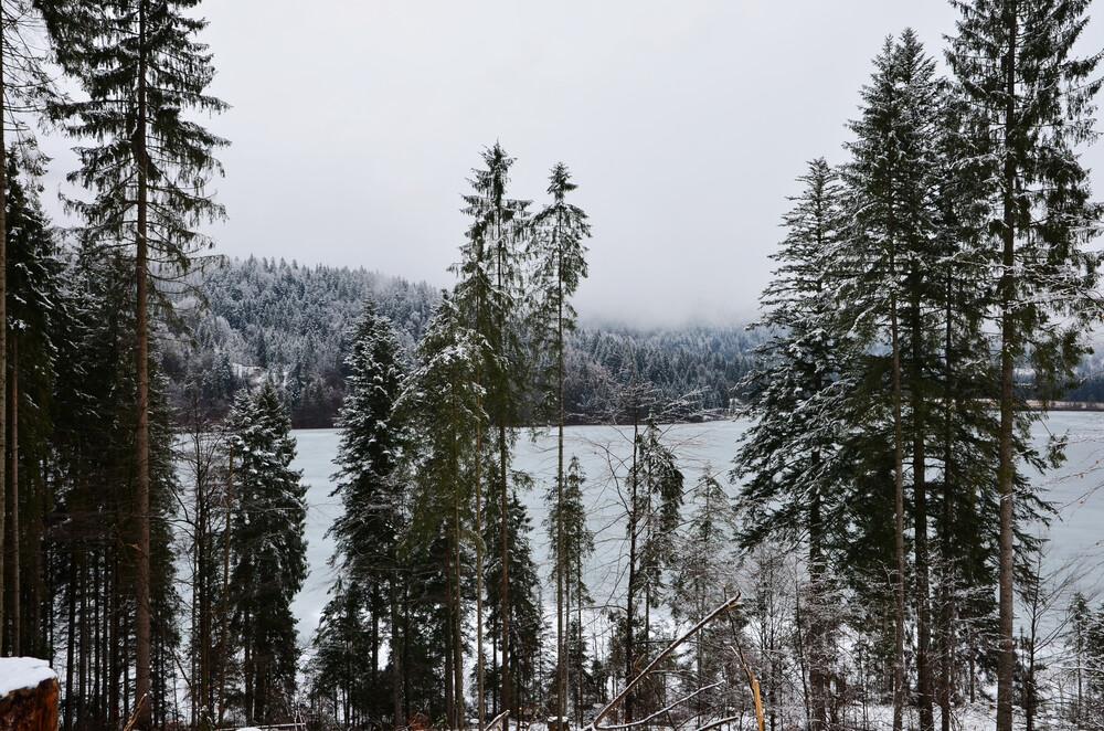 Winter am See - fotokunst von Michael Brandone