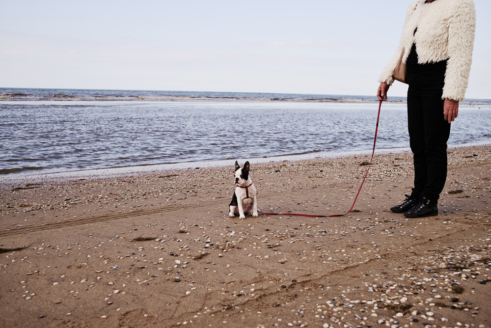 We live on the leash of our senses - fotokunst von Simon Bode