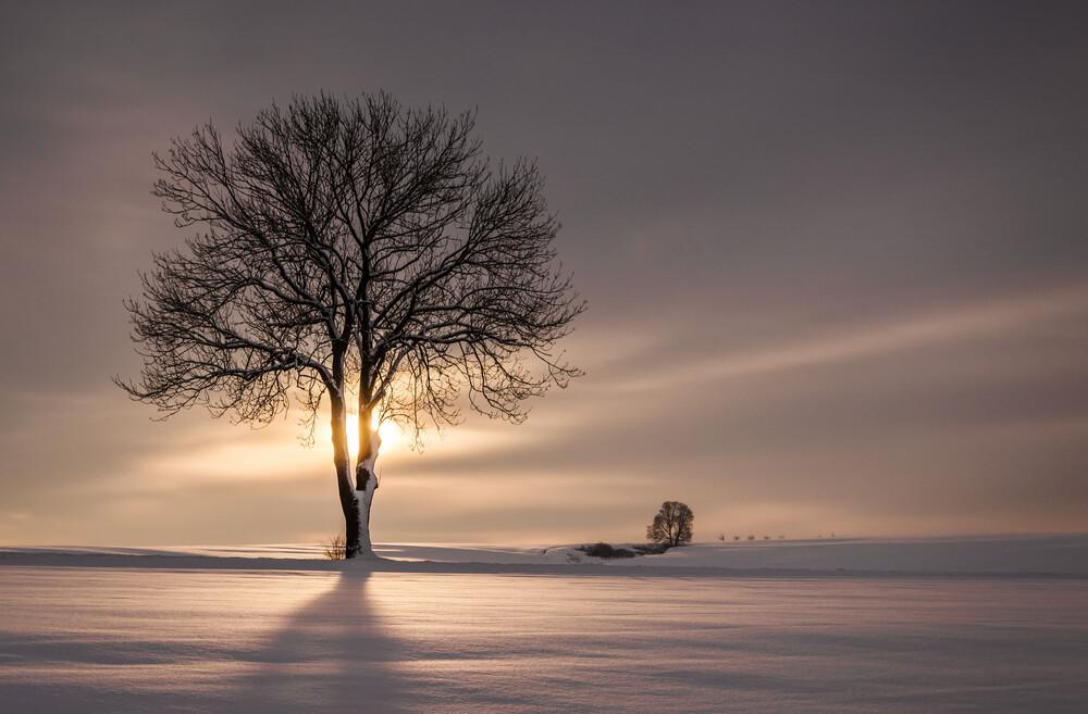 Ray Of Light - fotokunst von Heiko Gerlicher