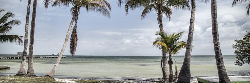 Florida XXX - fotokunst von Michael Schulz-dostal