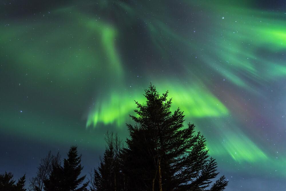 Polarlichter auf den Lofoten - fotokunst von Stefan Schurr