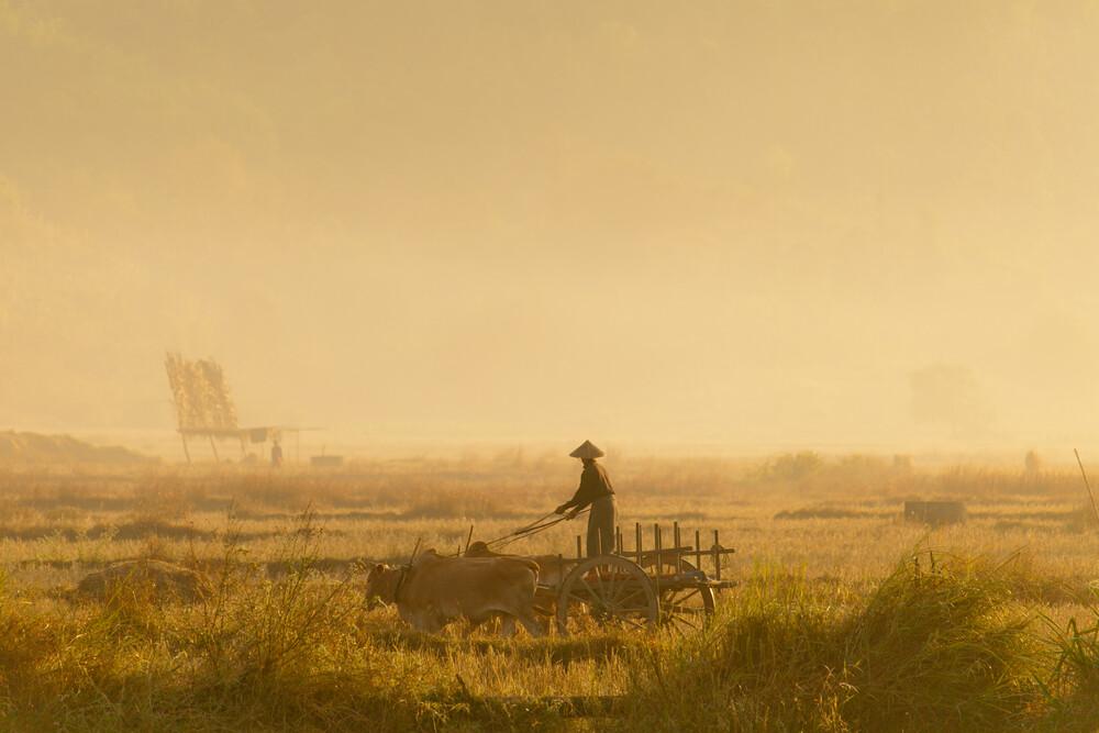 Golden Ride - fotokunst von Marc Rasmus