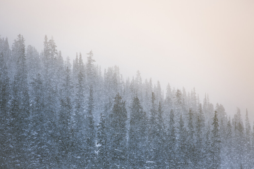 it's dumping - Fineart photography by Jan Eric Euler