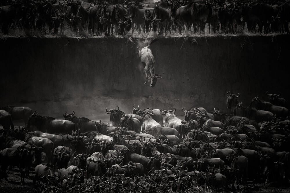 The Great Migration - fotokunst von Nicole Cambré
