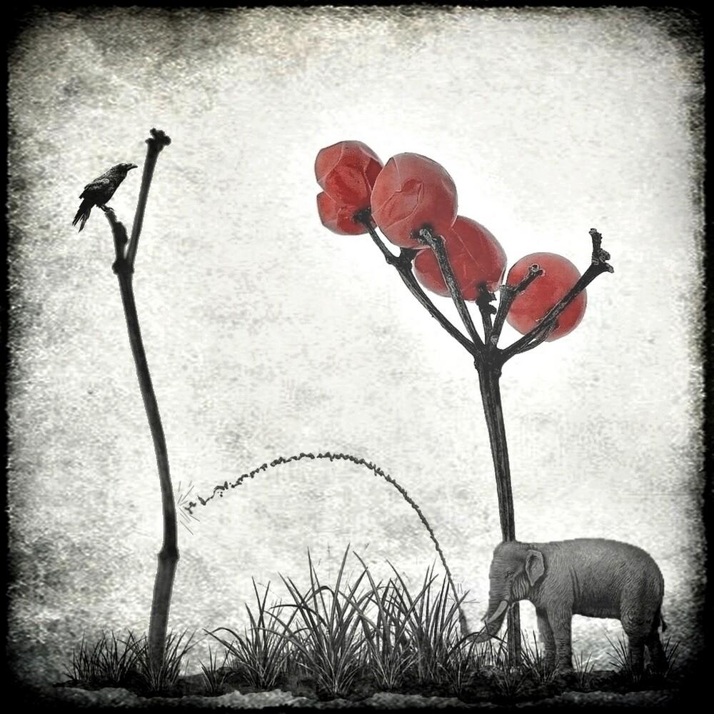 le jardinier passionné - fotokunst von Frank Wöllnitz