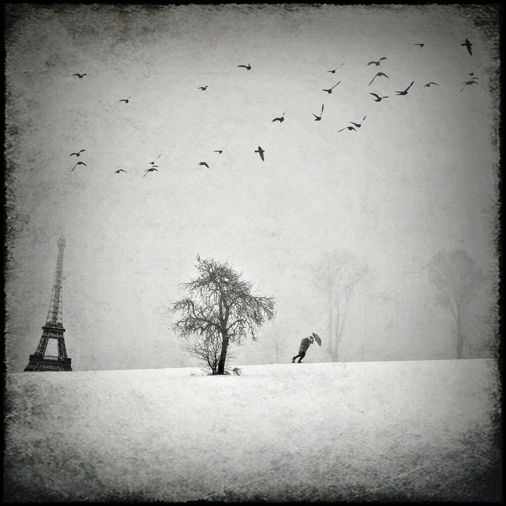Mon Dieu.. ! - fotokunst von Frank Wöllnitz