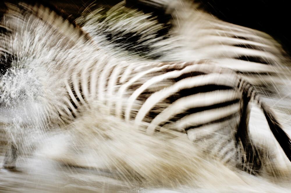 Crossing - Fineart photography by Simone Sbaraglia