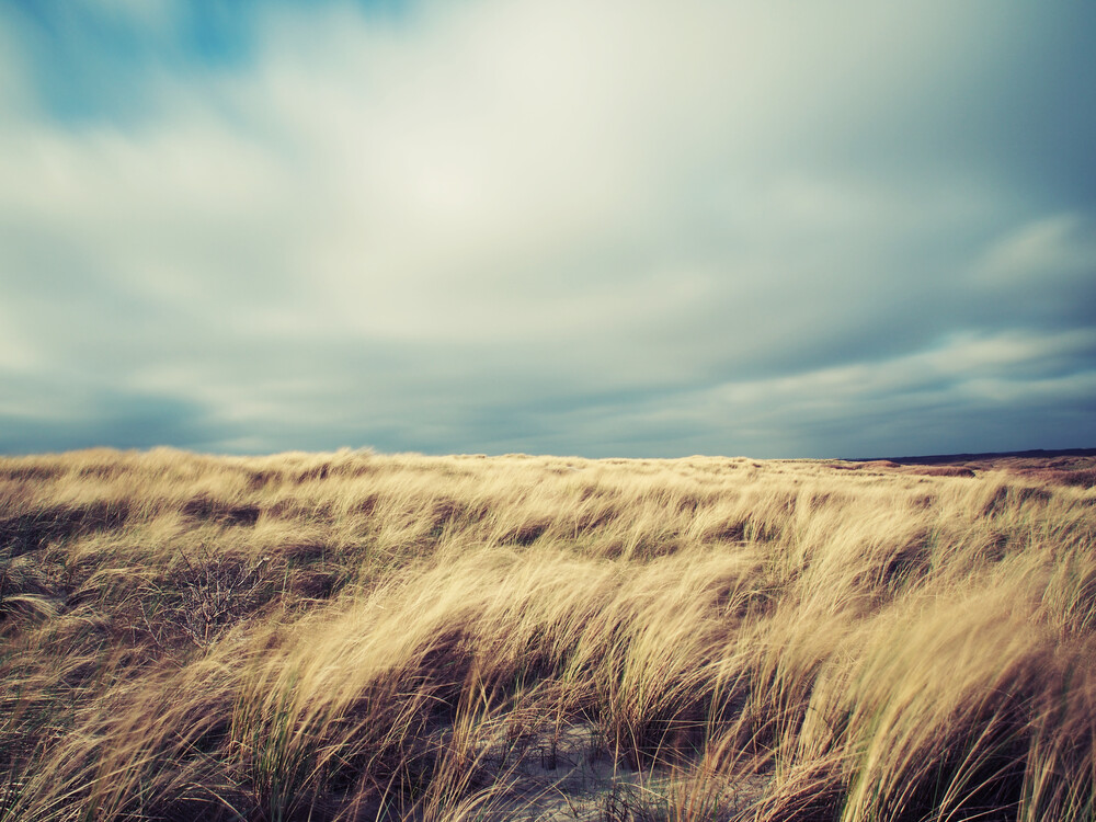 gusty - Fineart photography by Kay Block
