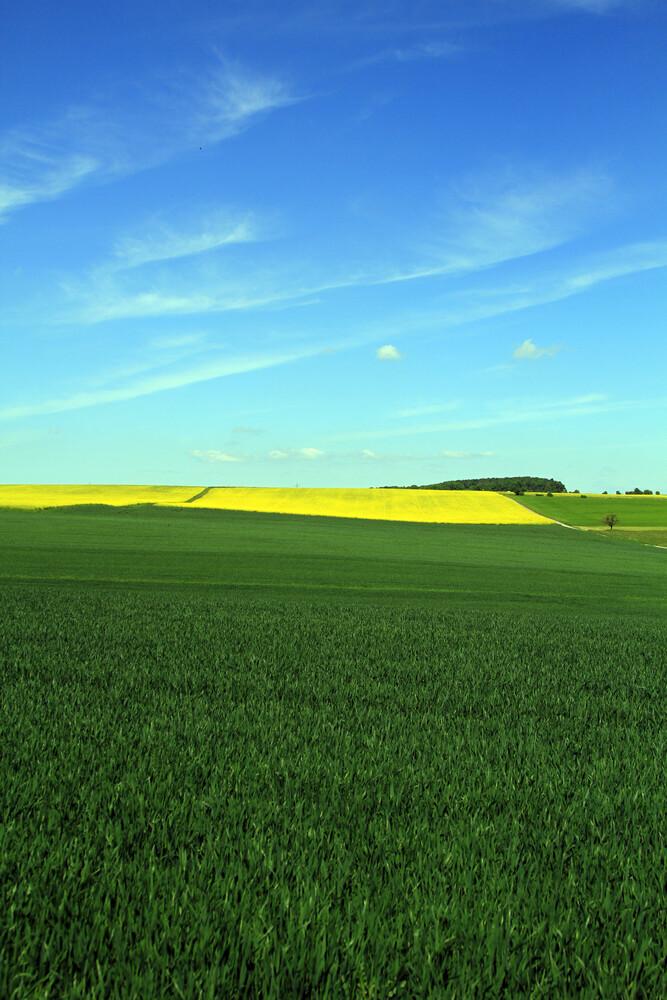 yellow - fotokunst von Jens Berger