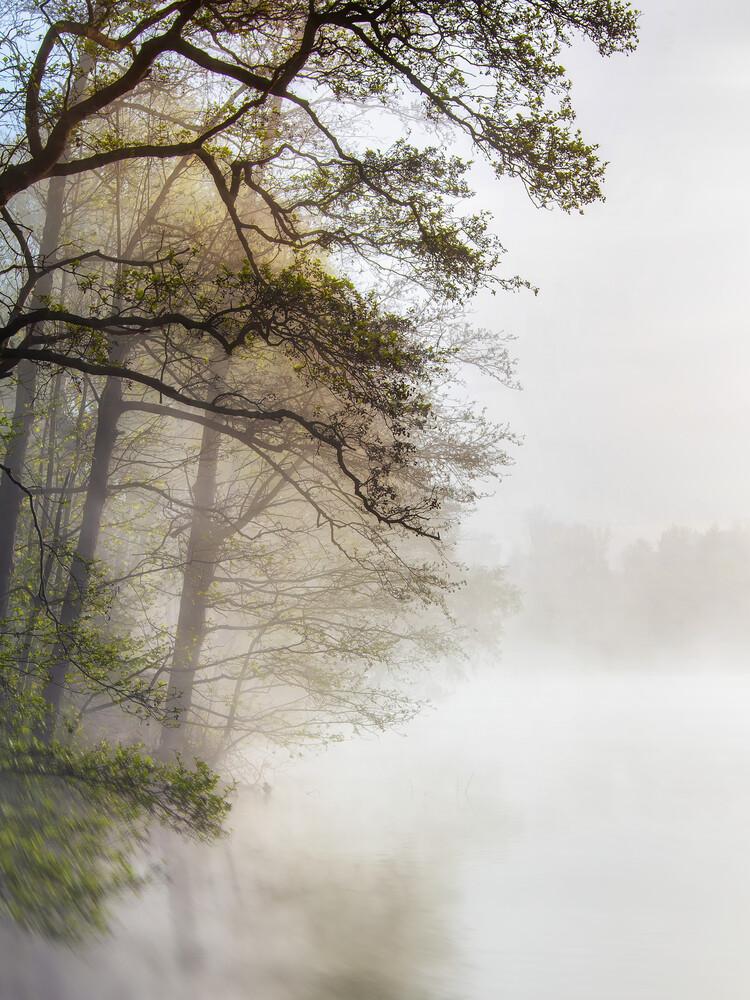 Morgens am See - fotokunst von Jake Playmo