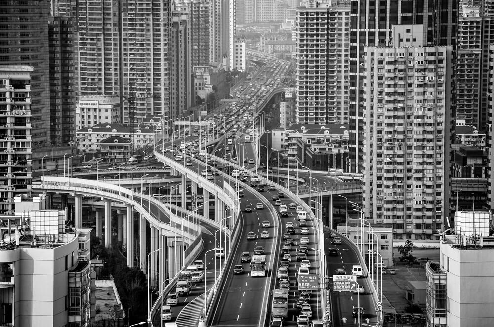 Concrete Jungle - fotokunst von Fabian Pfitzinger