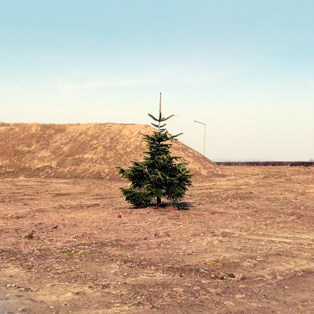Christmas on Mars - Fineart photography by David Foster Nass