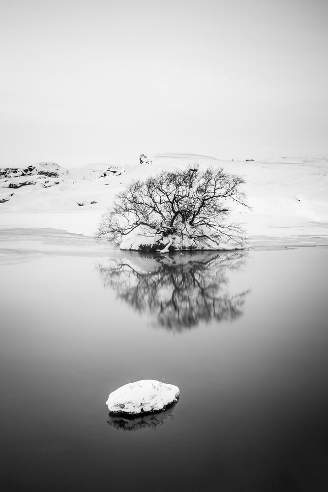 The lonely tree - fotokunst von Markus Van Hauten