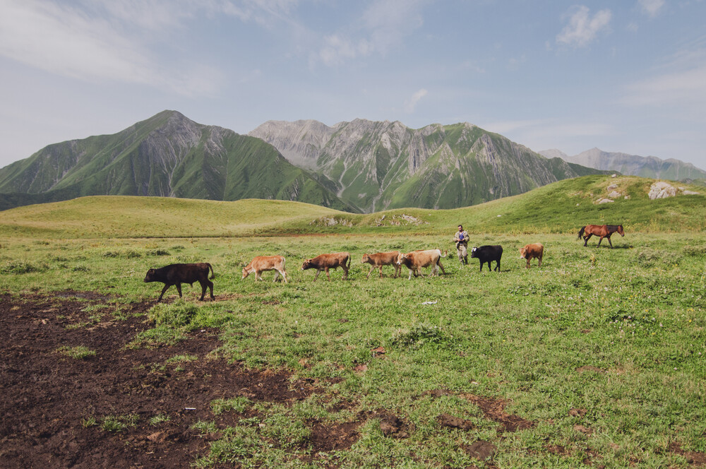 A day and night in the Caucasus - fotokunst von Dia Takacsova