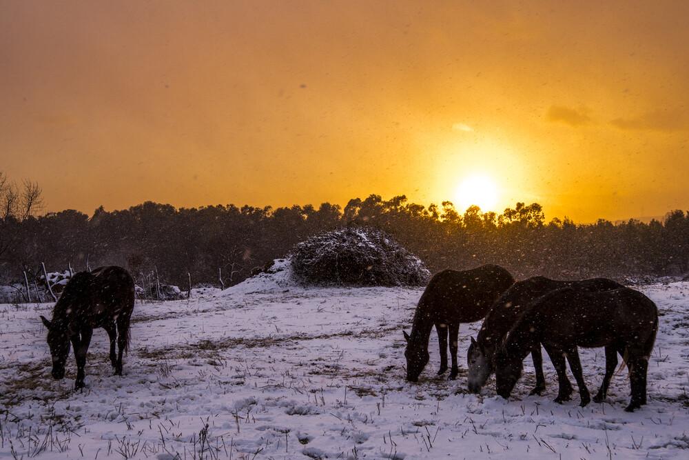 Snowy sunset in Sicily - fotokunst von Alessio Campo