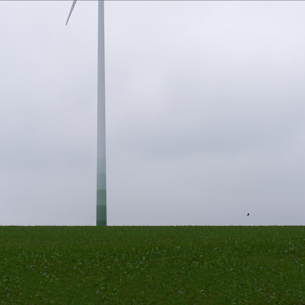alles grün - fotokunst von Klaus Lenzen