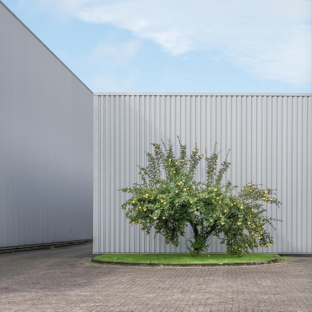 Oase - fotokunst von Klaus Lenzen