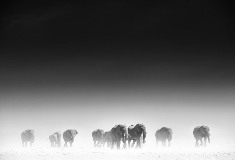 Raus aus dem Dunst - fotokunst von Tillmann Konrad
