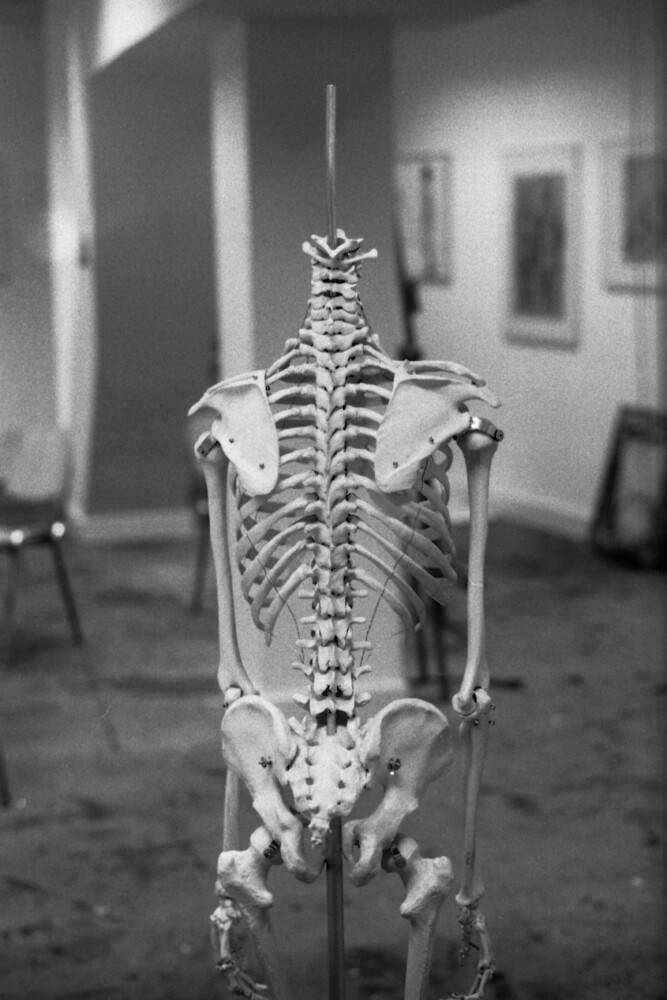 Skeleton - Fineart photography by Madelaine Grambow