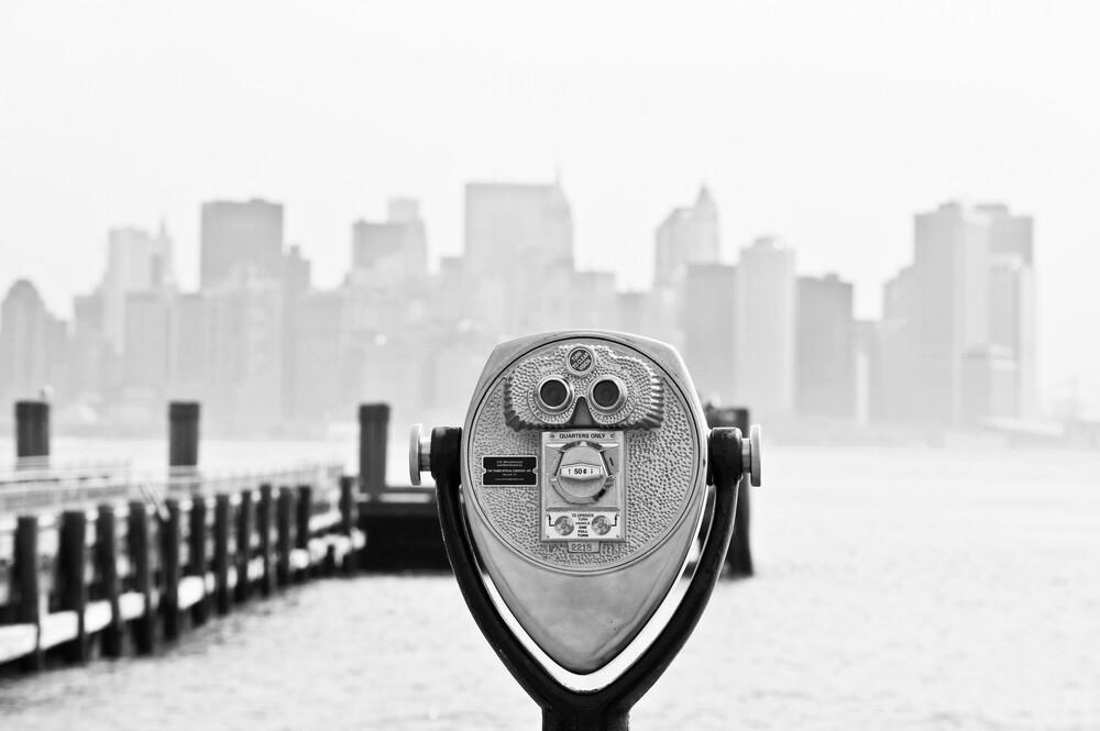 Liberty Island - fotokunst von Daniel Schoenen