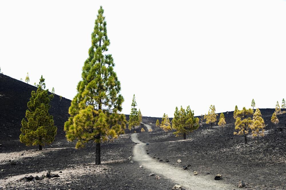 der Weg zum Vulkan - fotokunst von Daniel Schoenen