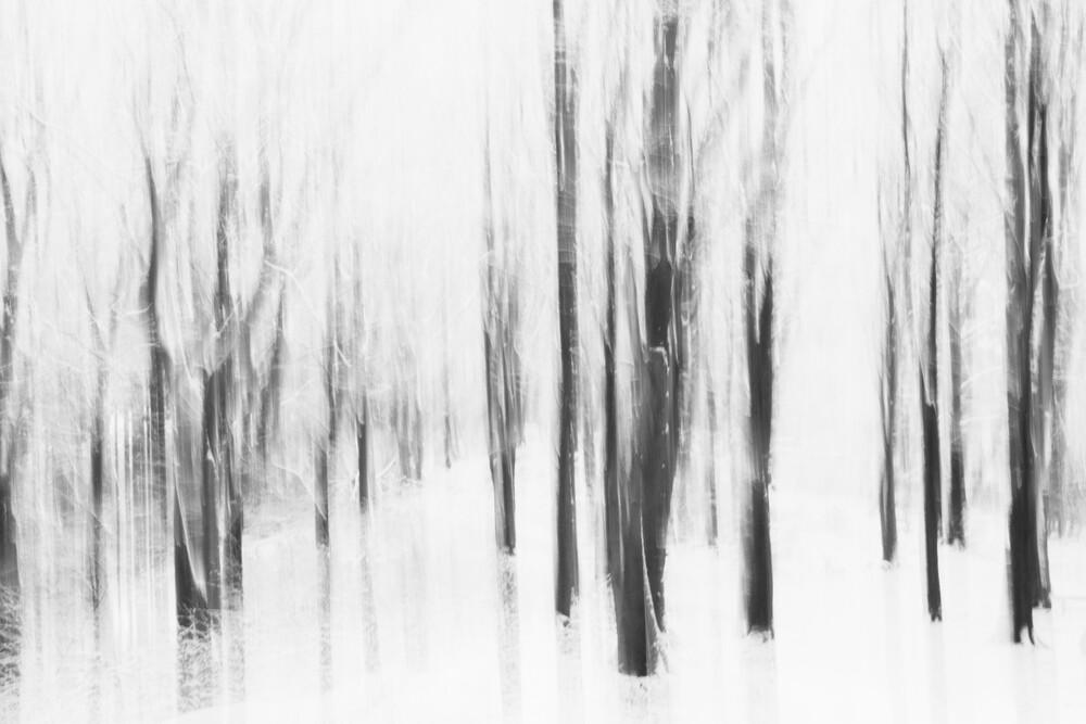 Verwischter winterlicher Teutoburger Winterwald - fotokunst von Nadja Jacke