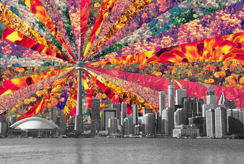 Blooming Toronto - Fineart photography by Bianca Green