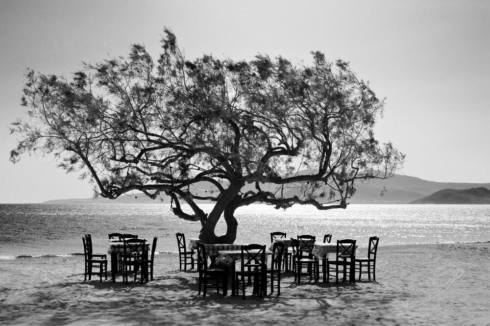 Der Baum - fotokunst von Simon Bode