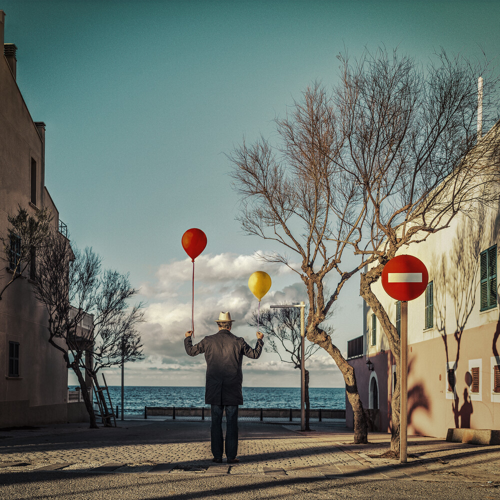 . le vent te portera . - Fineart photography by Ambra