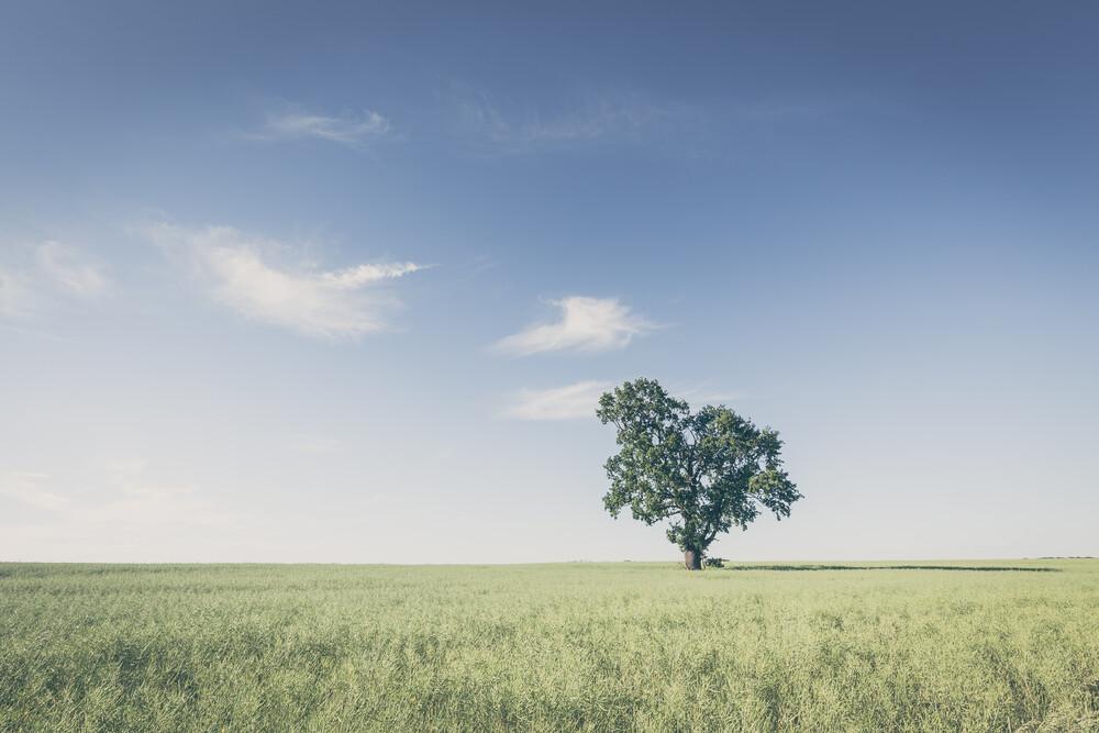 ländliche Stille - fotokunst von Holger Nimtz