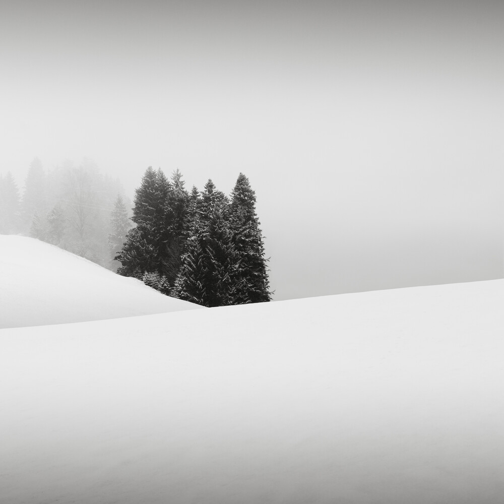 Oasis - Fineart photography by Ronny Behnert