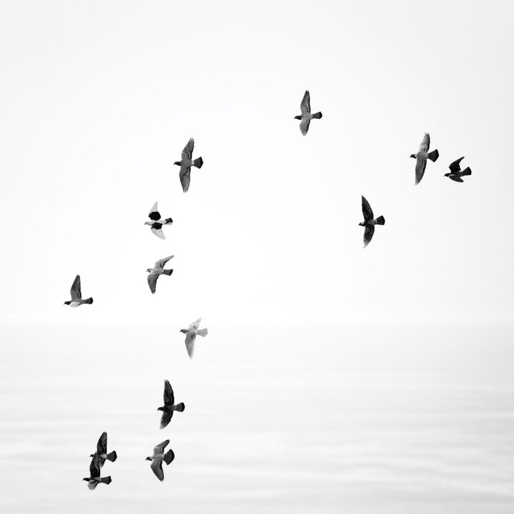 Freedom - fotokunst von Holger Nimtz