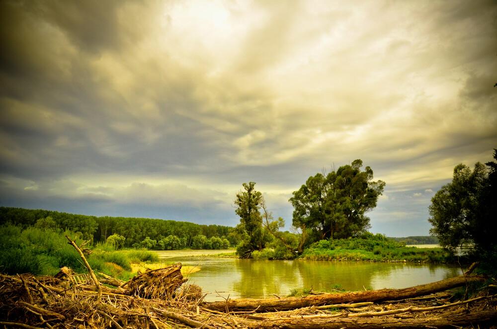 We need nature. It's not the other way round.  - fotokunst von Markus Enenkel