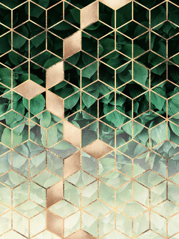 Leaves And Cubes - fotokunst von Elisabeth Fredriksson