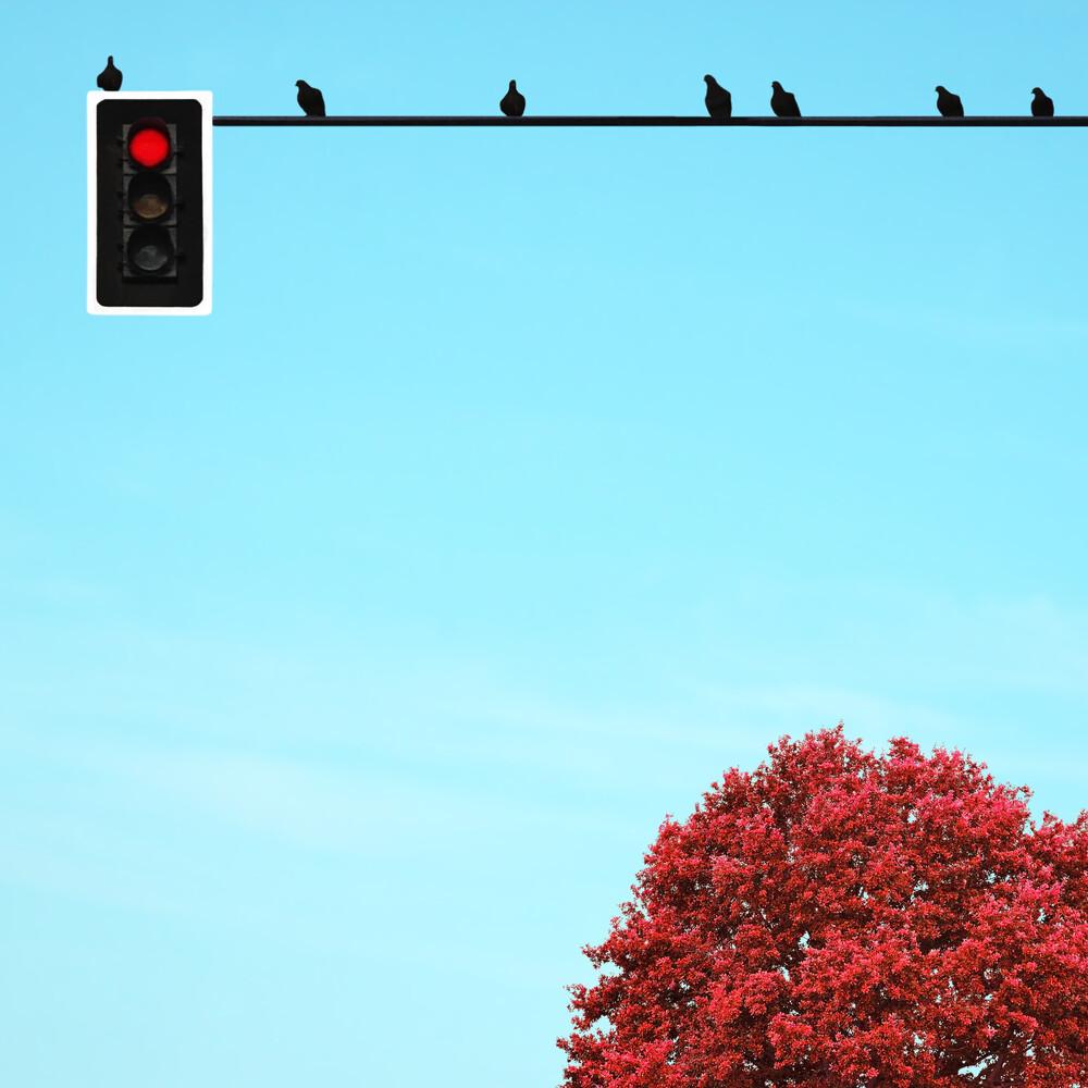 Pare - fotokunst von Pascal Krumm