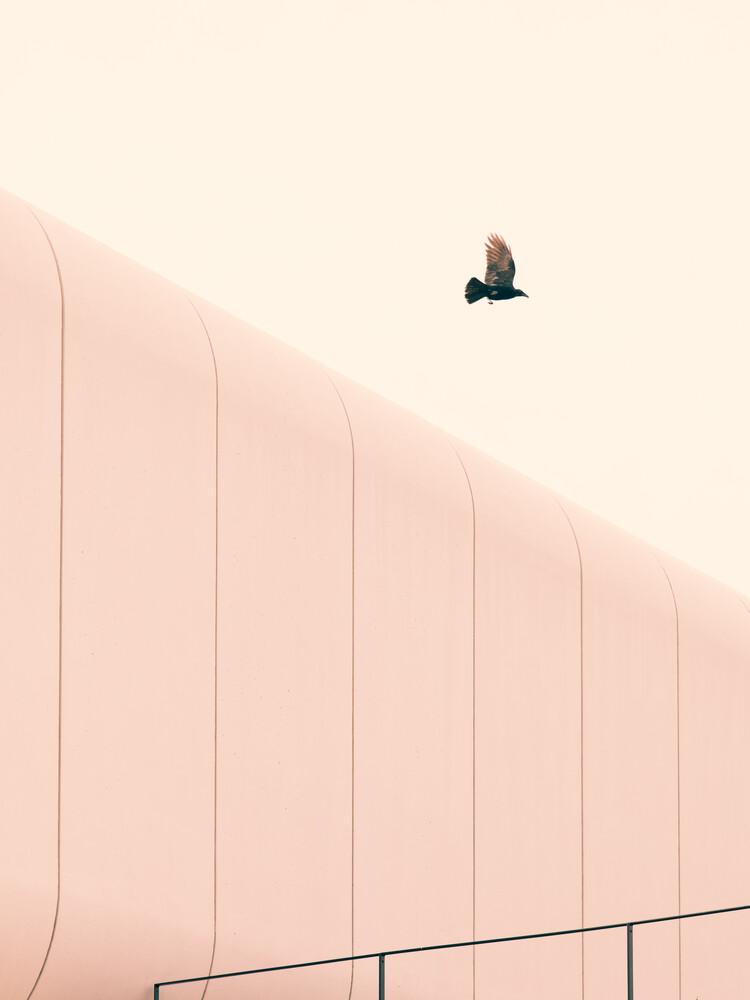 Unexpected - fotokunst von Stéphane Dupin