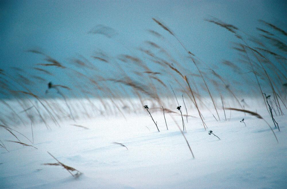 Lettische Winter - Fineart photography by Carsten Wilde