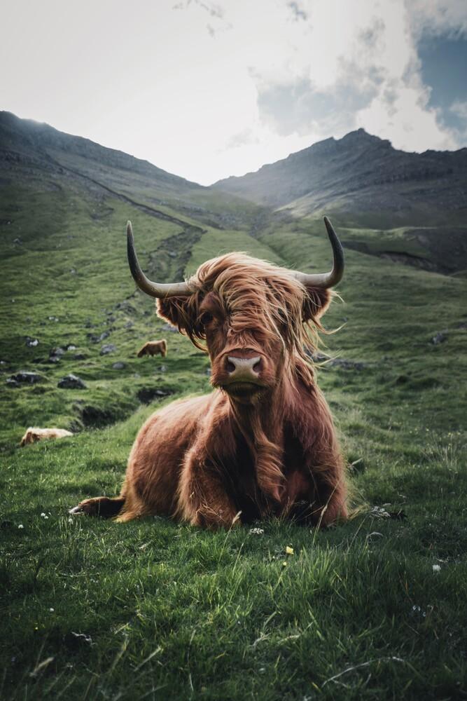 Trendige Haare - fotokunst von Dominic Lars