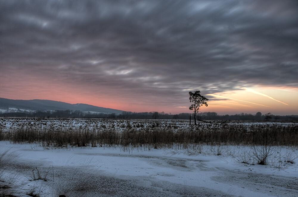 Mystischer Sonnenuntergang im Grossen Torfmoor - Fineart photography by Sascha Wichert