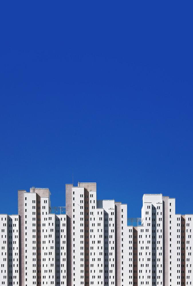 Mandibula - fotokunst von Yener Torun