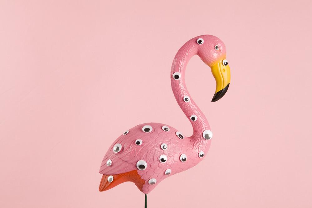 pink and freak flamingo - fotokunst von Loulou von Glup