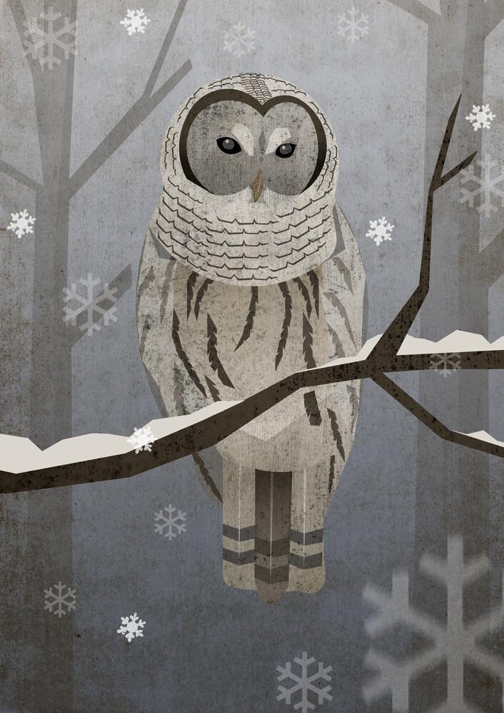Schneeeule - fotokunst von Sabrina Ziegenhorn