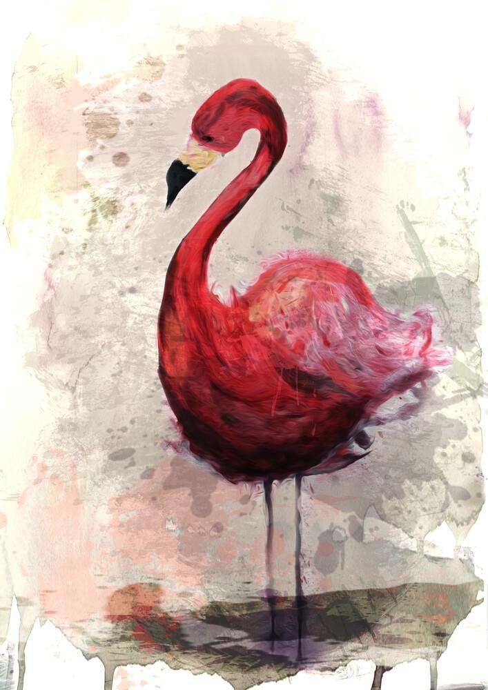 pink Flamingo - fotokunst von Sabrina Ziegenhorn