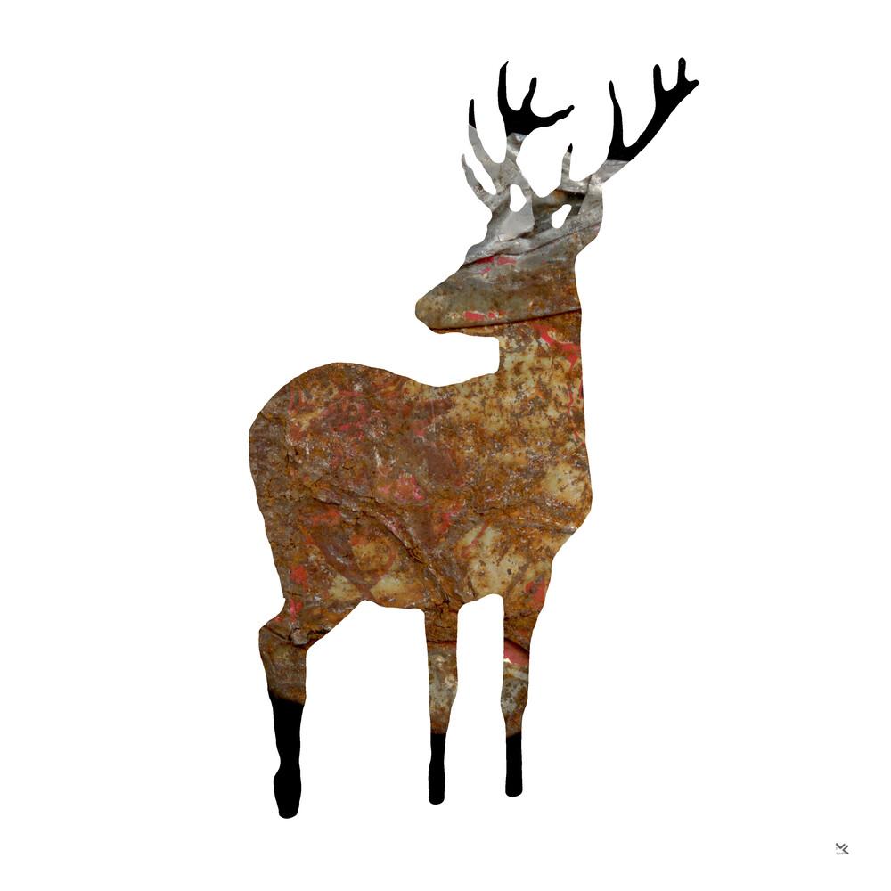 Deer · things from the past - fotokunst von Marko Köppe