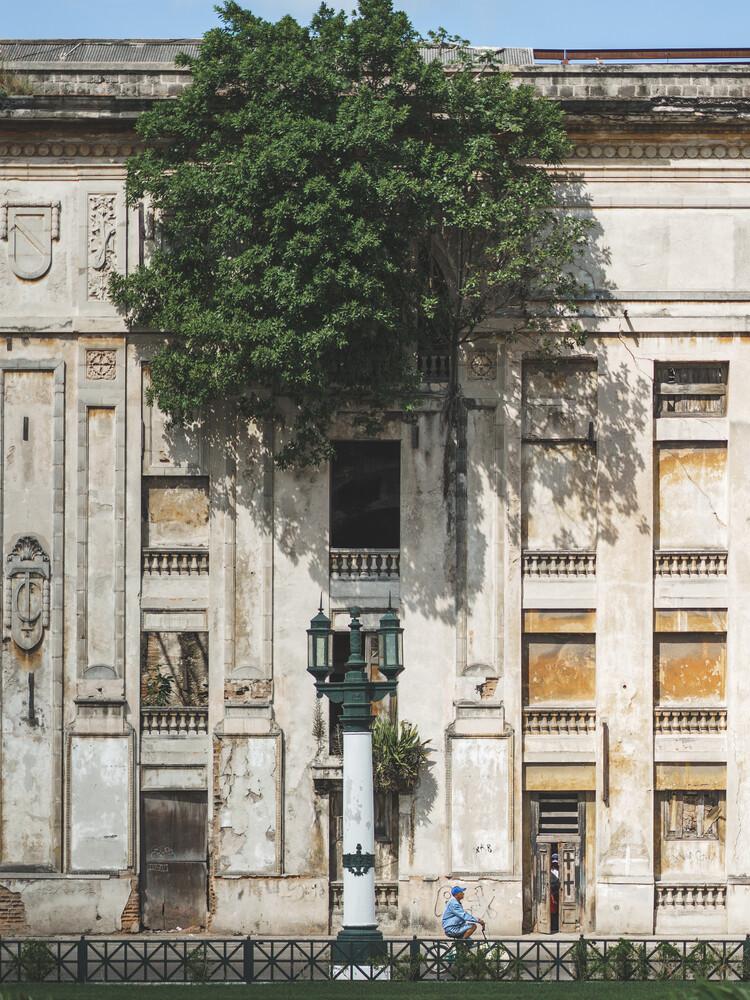 housetree - fotokunst von Dimitri Luft