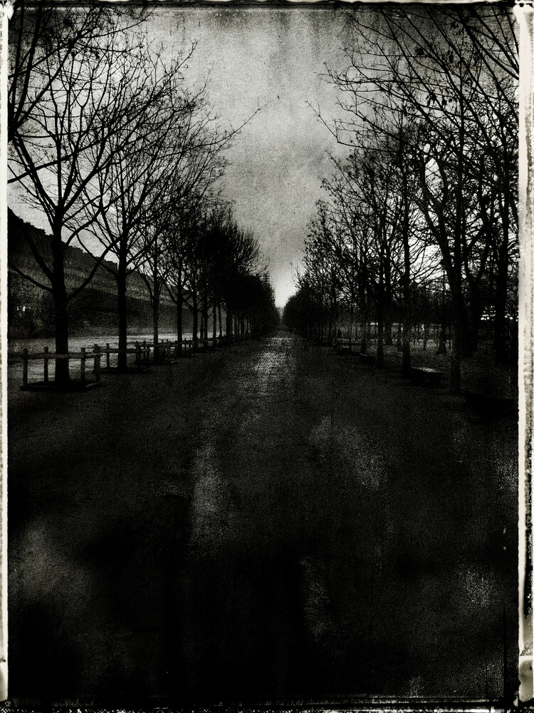 Tuileries - Fineart photography by Sophie Etchart