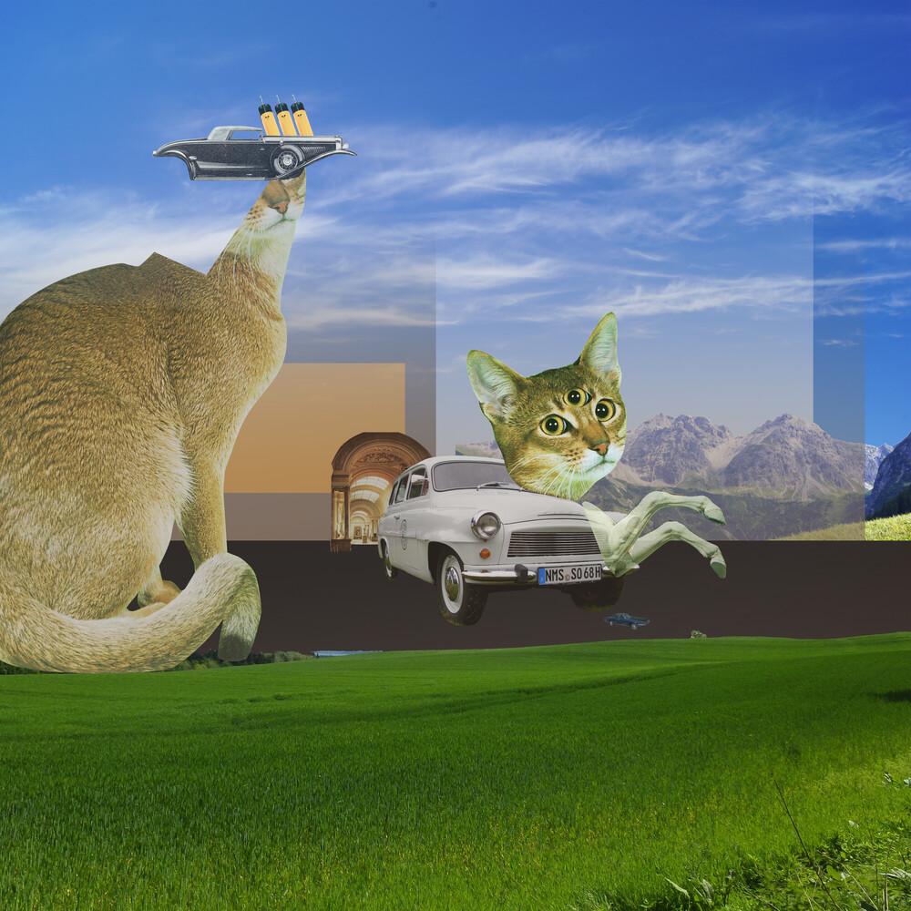 atmosphere · KatzenJammer 2 - fotokunst von Marko Köppe