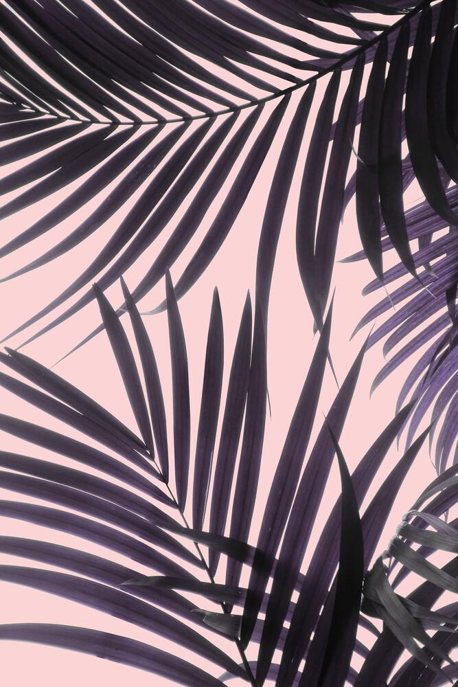 Pink Jungle - fotokunst von Emanuela Carratoni