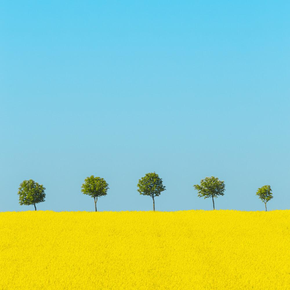 Spring - fotokunst von Holger Nimtz