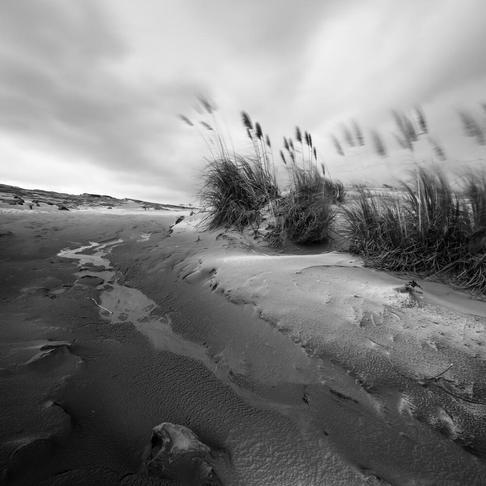 TE PAKI SAND DUNES - fotokunst von Christian Janik